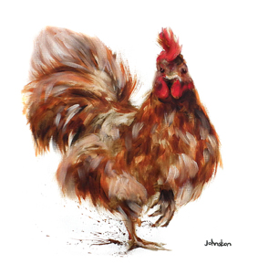 Cockerel C